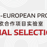 6th edition SINO-EUROPEAN PROJECT LAB – Official Selection